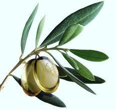 conseguirbajardepeso.wordpress.com aceite de oliva.jpg