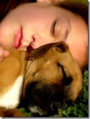 conseguirbajardepeso.wordpress.com la importancia del sueño